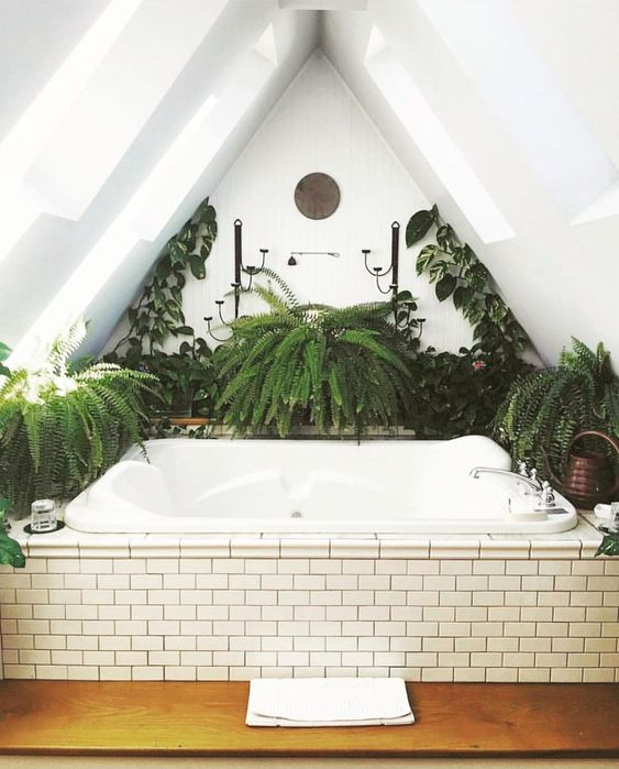 Attic Bathroom Garden Idea
