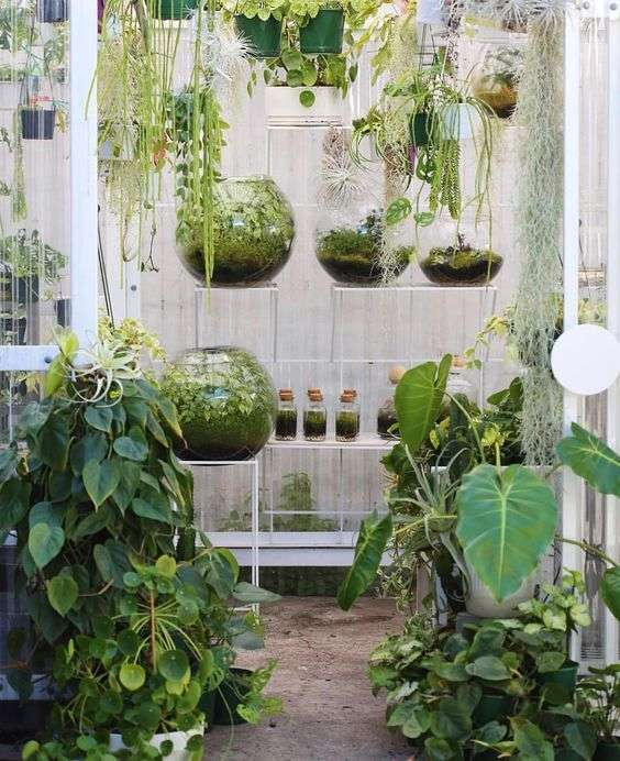 Bottled Garden Idea
