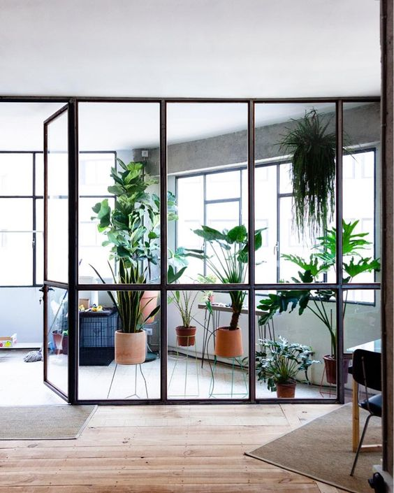 Minimalist indoor garden design