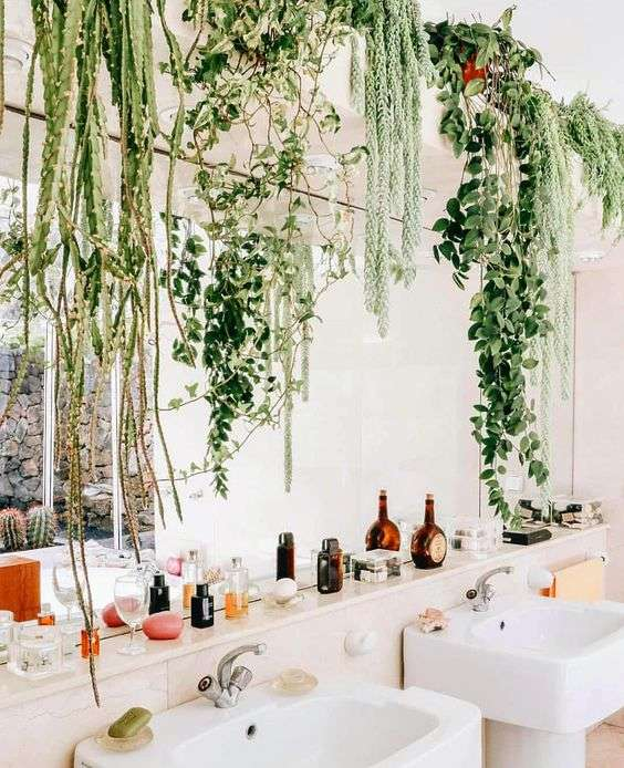 Bathroom garden idea