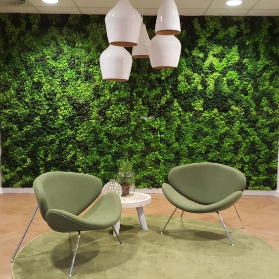 Green Moss Wall Decor Idea
