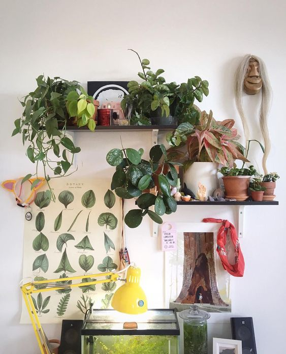 Green study corner garden idea