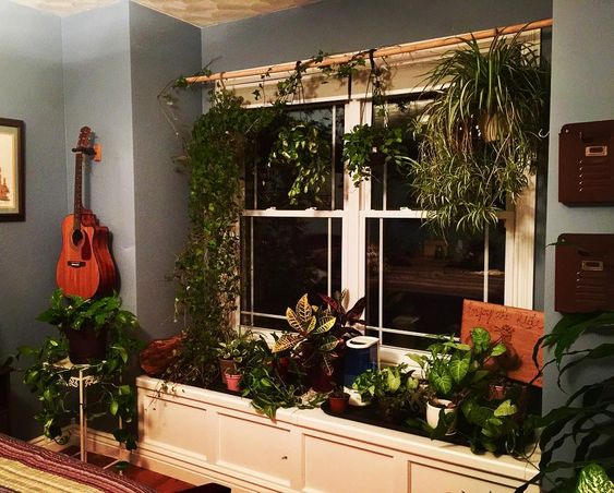 Air Purifying Indoor Garden Idea