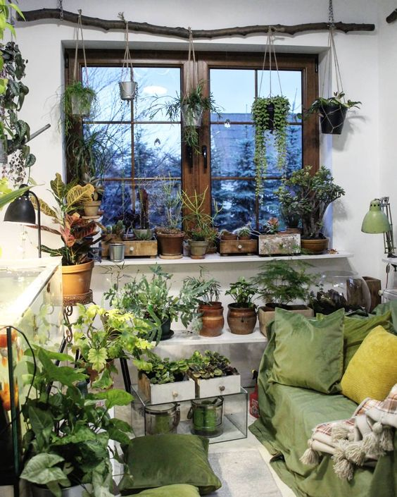 Indoor Garden Idea for rooms with good lighting