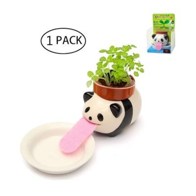 cute animal planter for your home