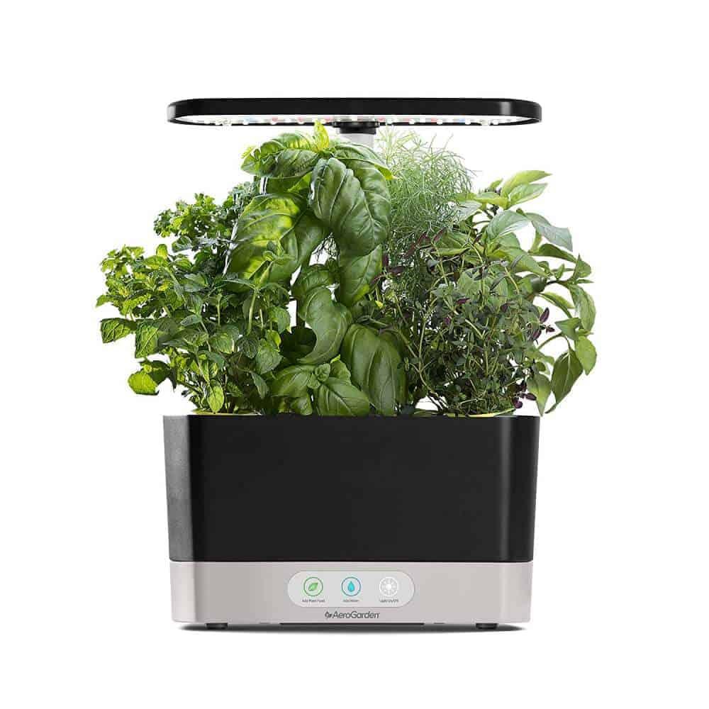 AeroGarden Harvest indoor herb kit