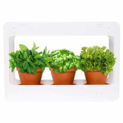 Mindful Design LED Indoor Herb Garden review