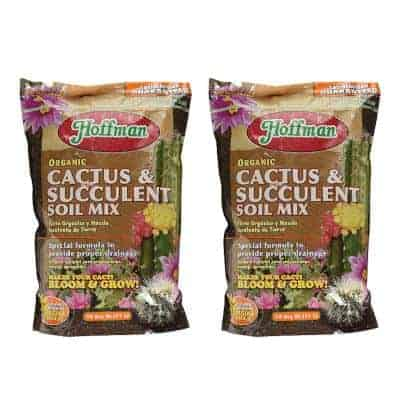 best organic soil for succulents