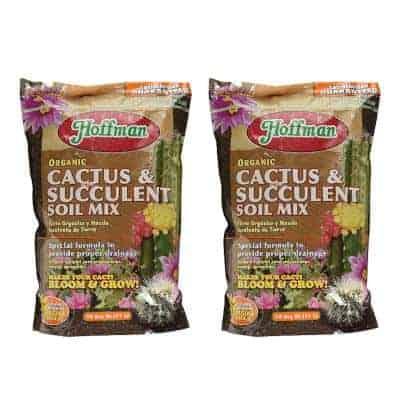 best organic soil for succulents