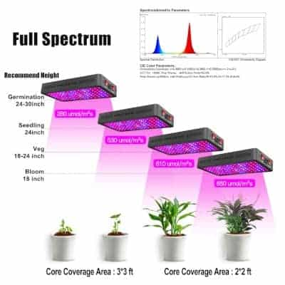 purple grow light with thermometer