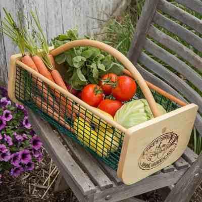 vegetables harvest bascket