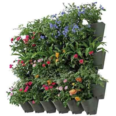 self watering wall garden
