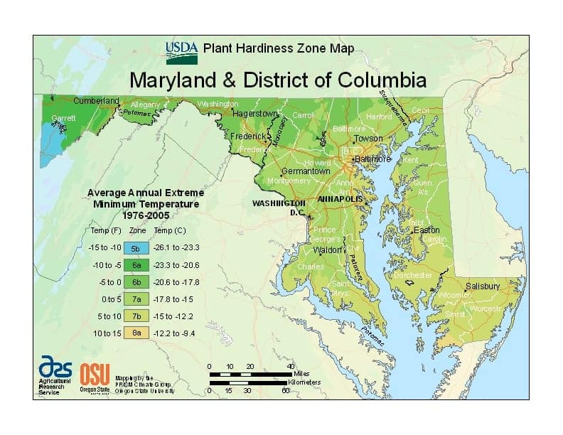 District of Columbia USDA Zone Map