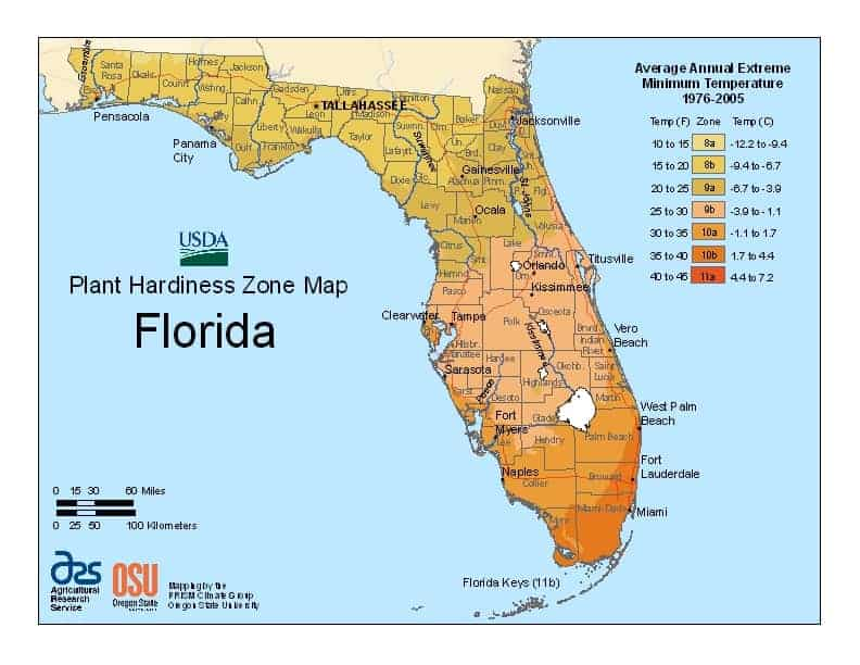 Florida USDA Zone Map