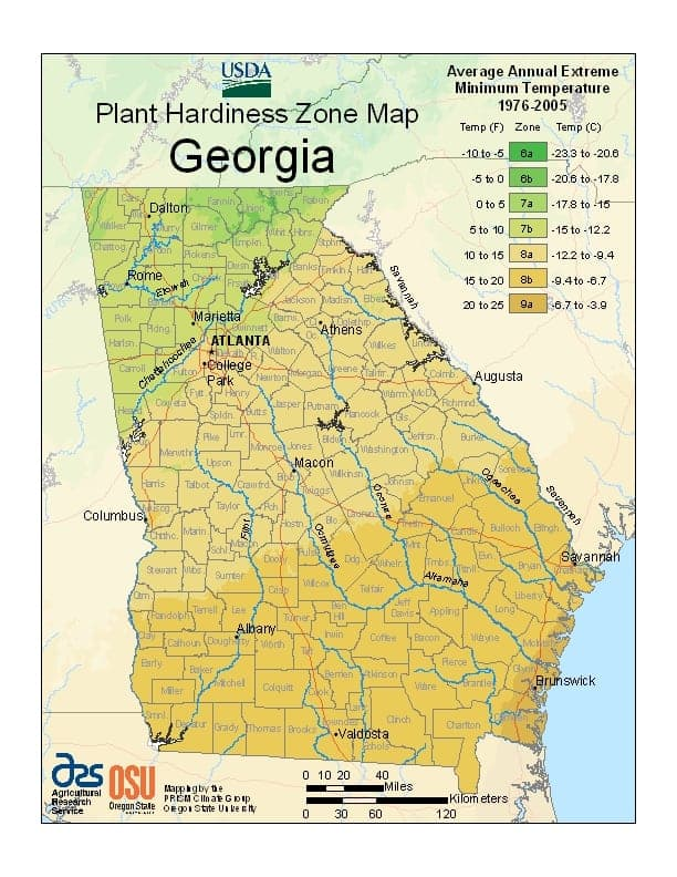 Georgia USDA Zone Map
