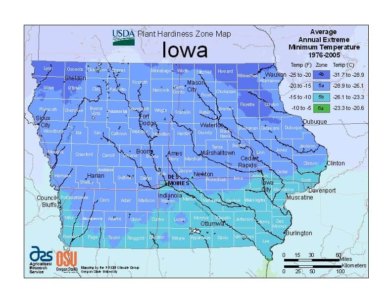 Iowa USDA Zone Map