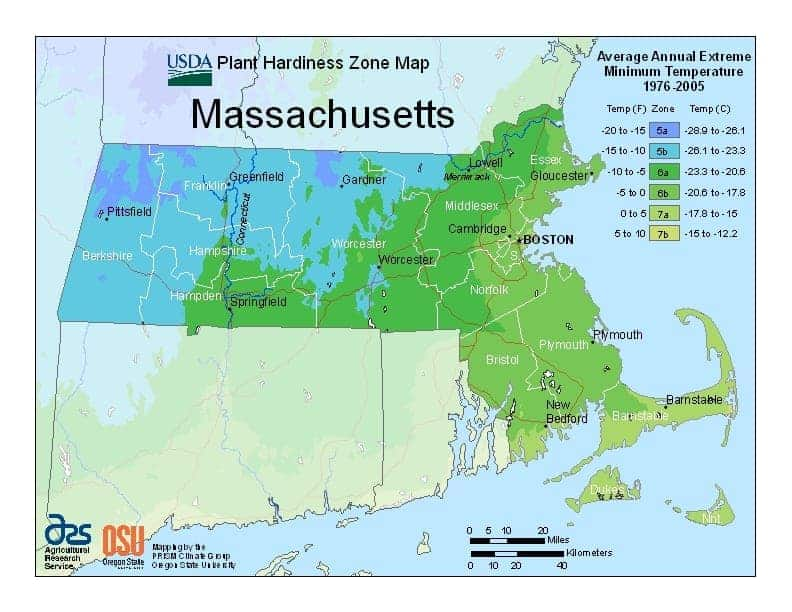 Massachusetts USDA Zone Map