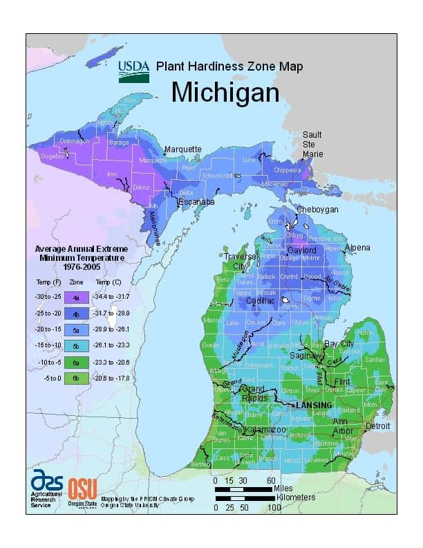 Michigan USDA Zone Map