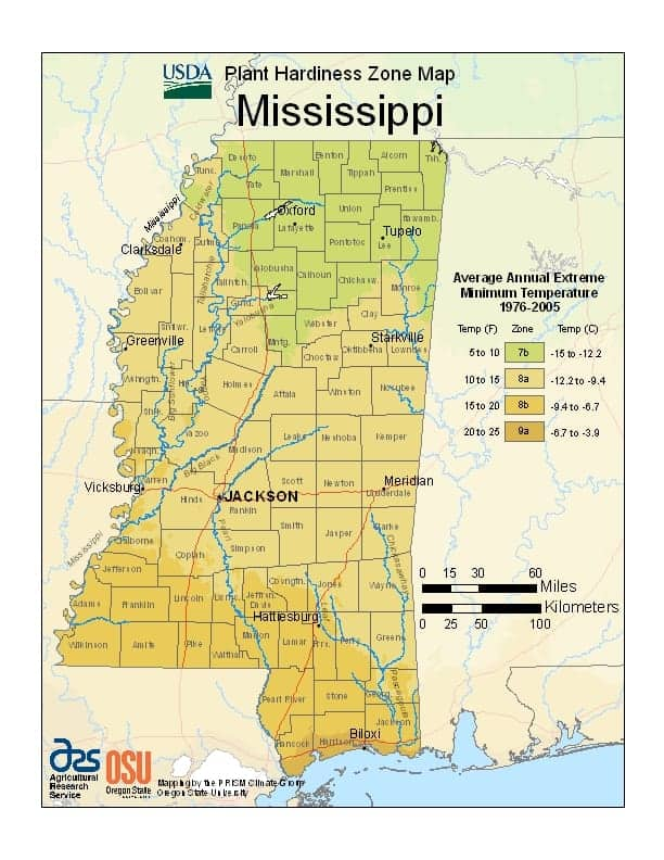 Mississippi USDA Zone Map