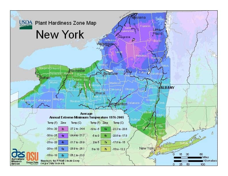 New York USDA Zone Map