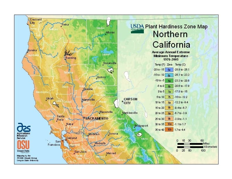 Northern California USDA Zones