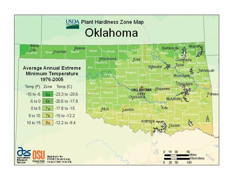 Oklahoma USDA Zone Map