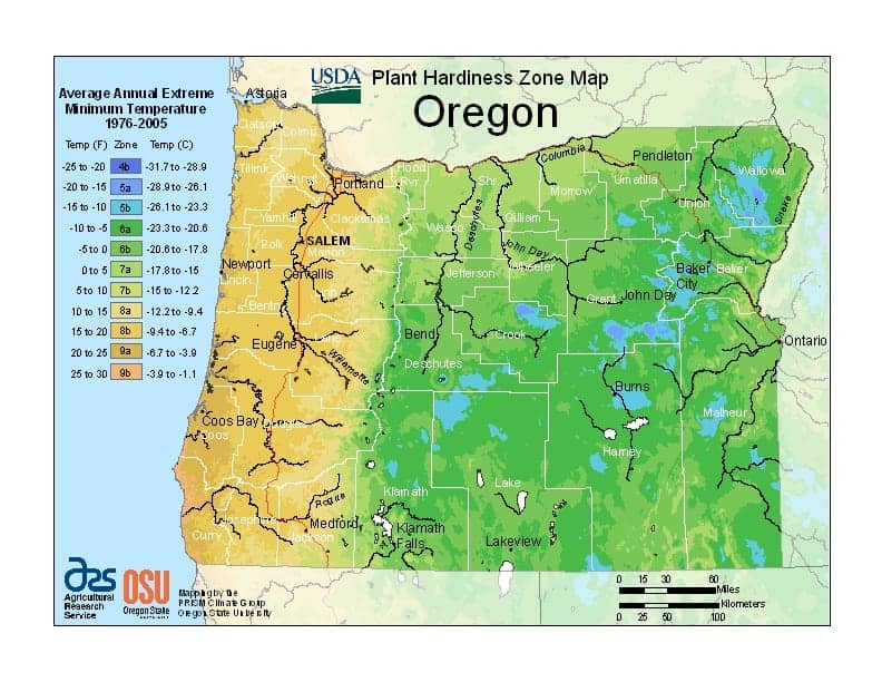 Oregon USDA Zone Map