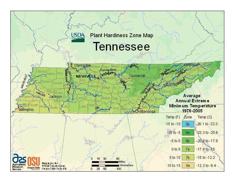 Tennessee USDA Zone Map