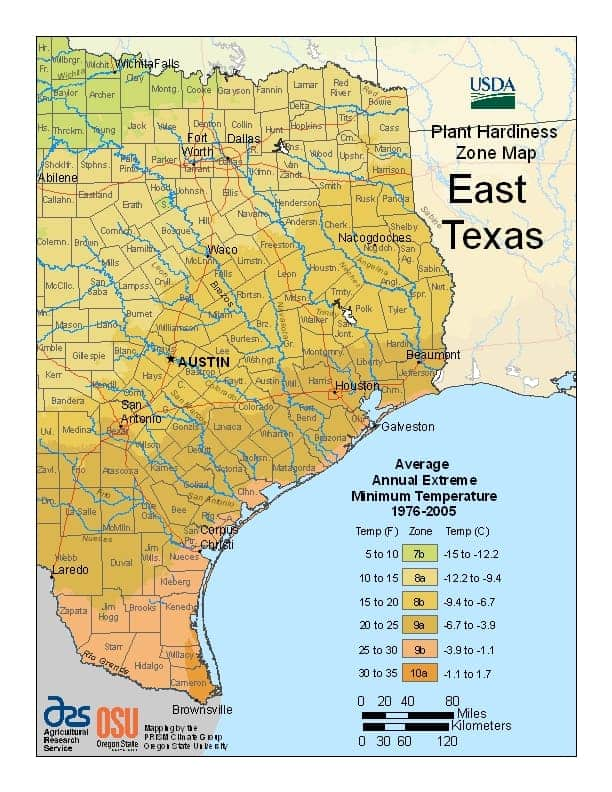 Eastern Texas USDA Zones