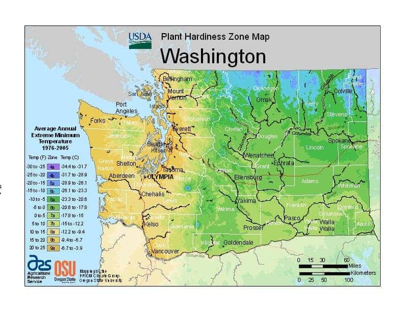 Washington State USDA Zone Map