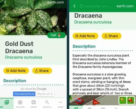 PlantSnap App Test