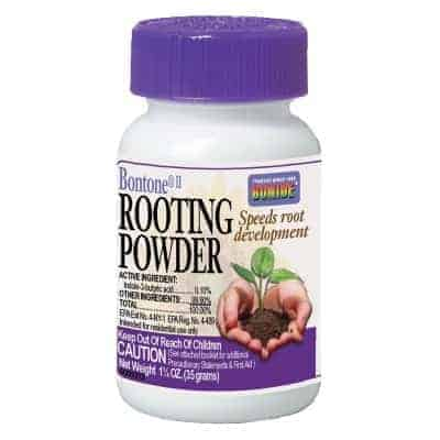bontone rooting powder review