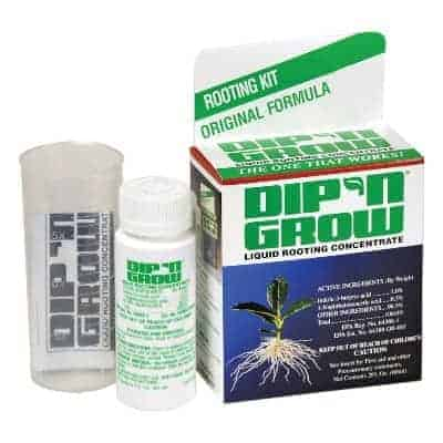 Dip N grow rooting hormone