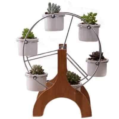 ferris wheel succulent pots set