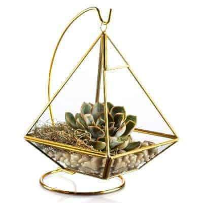 hanging piramid succulent terrarium