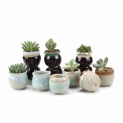 set of 6 succulents pots