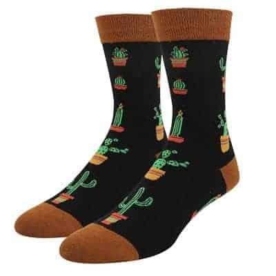 cute cacti and succulents socks