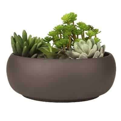 unglazed modern succulent bowl