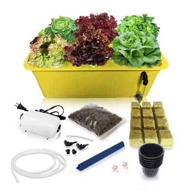 DWP Hydroponic Growing Kit
