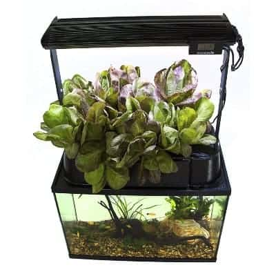Ecolife ECO Aquaponics Indoor Garden System