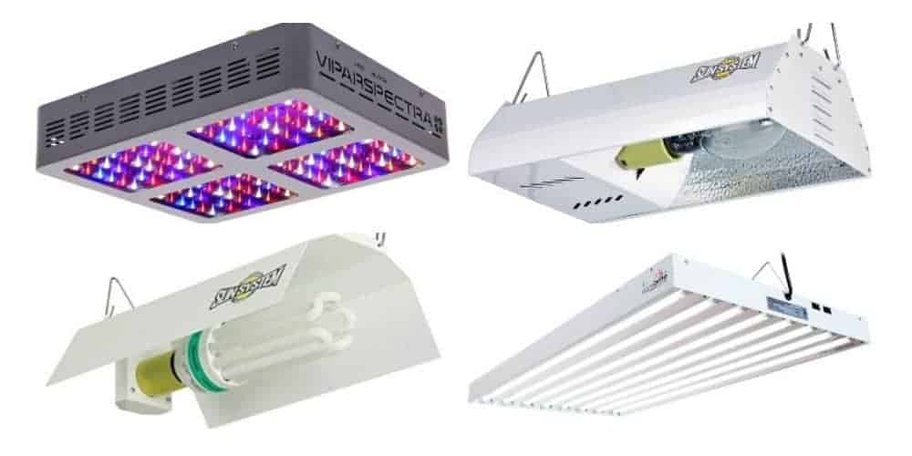 4 grow lights for indoor plants
