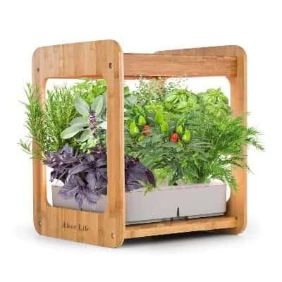 Ideer life hydroponic kit