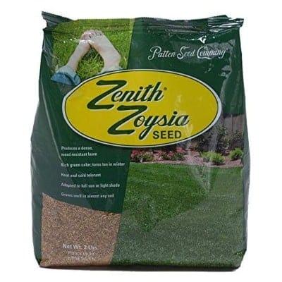 zoysia grass seeds