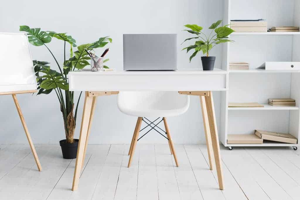 Plants in white office