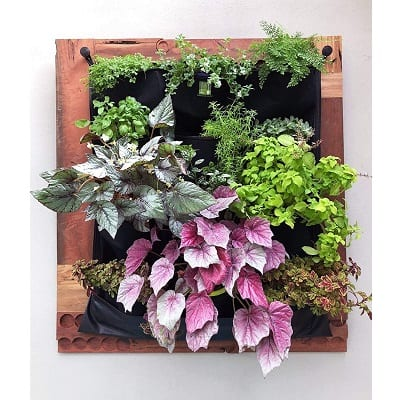 succulent wall planter pockets